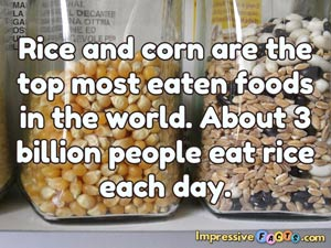 Rice and corn are the top most eaten foods in the world.